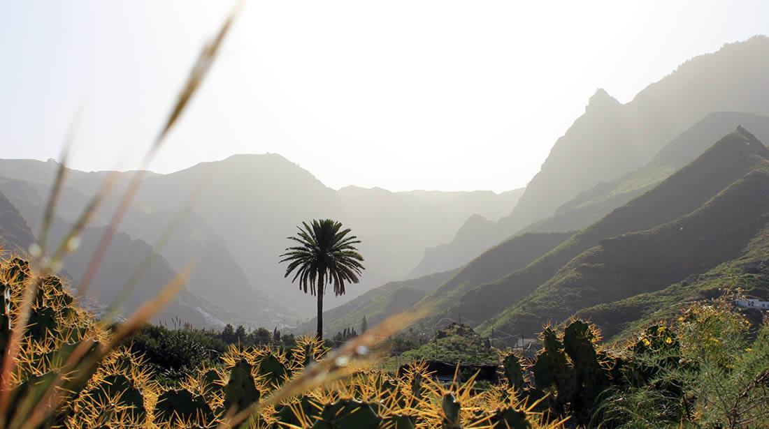 Valle de Agaete - Gran Canaria
