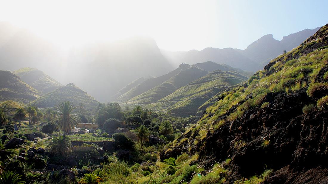 Barranco de Guayedra, Agaete, Gran Canaria