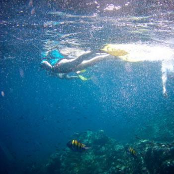 Snorkeling Agaete - Gran Canaria