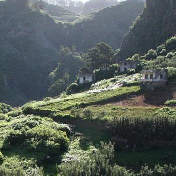 Barranco de Azuaje Gran Canaria