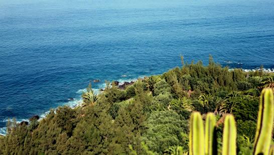Playa de Guayedra, Agaete, Gran Canaria